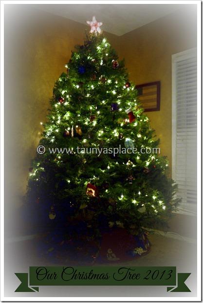 The Christmas Tree Saga of 2013