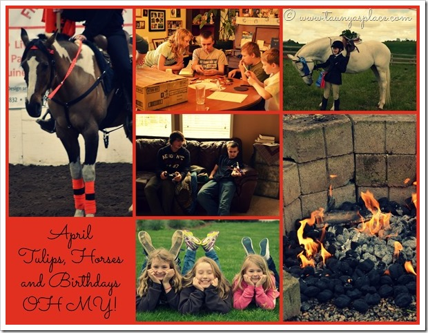 2013 Year in Review:  April 2013 - Tulips, Horses and Birthdays