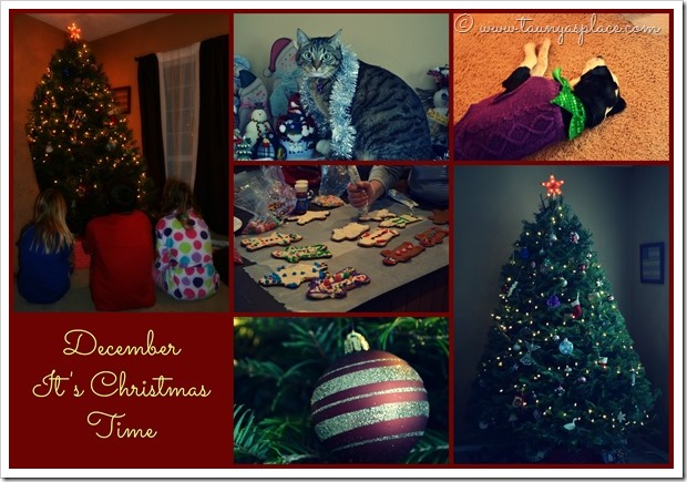 2013 Year in Review:  December 2013 - It's Christmas Time!