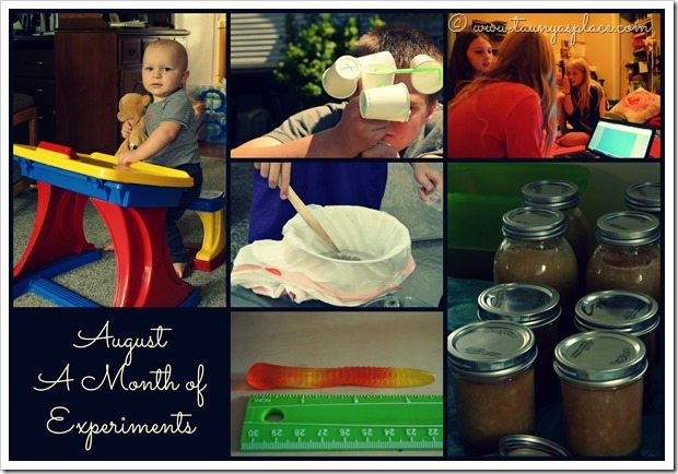 2013 Year in Review:  August 2013 - a month of science experiments, canning and friends