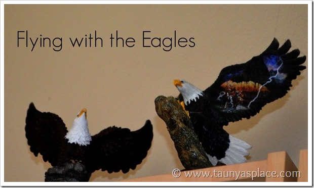 Flying with the eagles