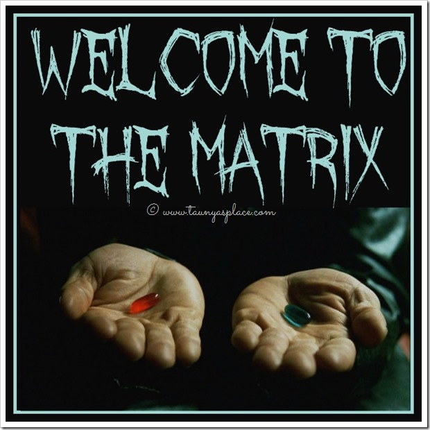 welcome to the matrix