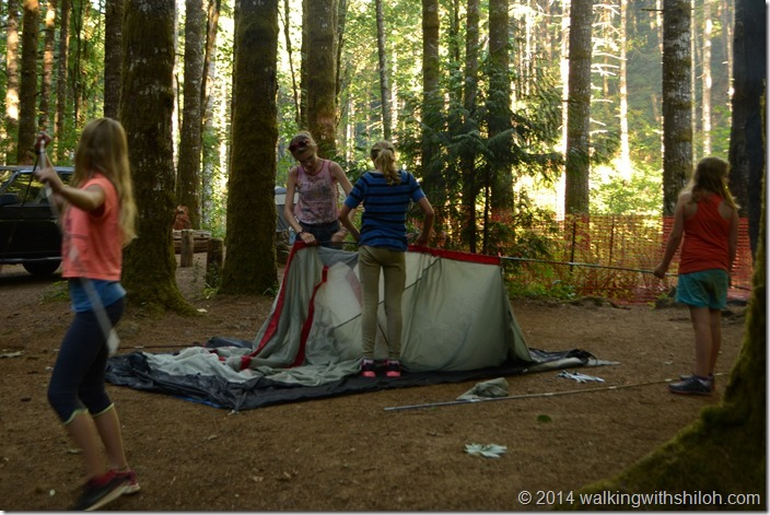 Camping on Gales Creek