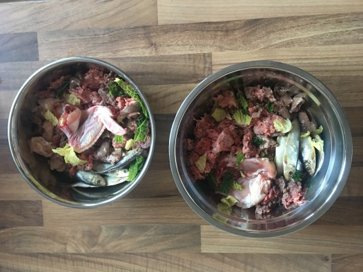Raw meal fro two dogs