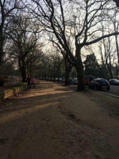 Walking into Sefton Park