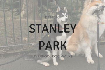 STANLEY PARK liverpool dog walks