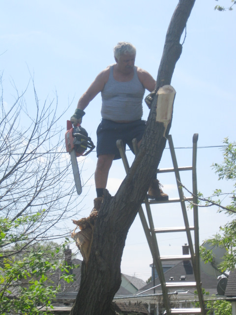 jerry treeman