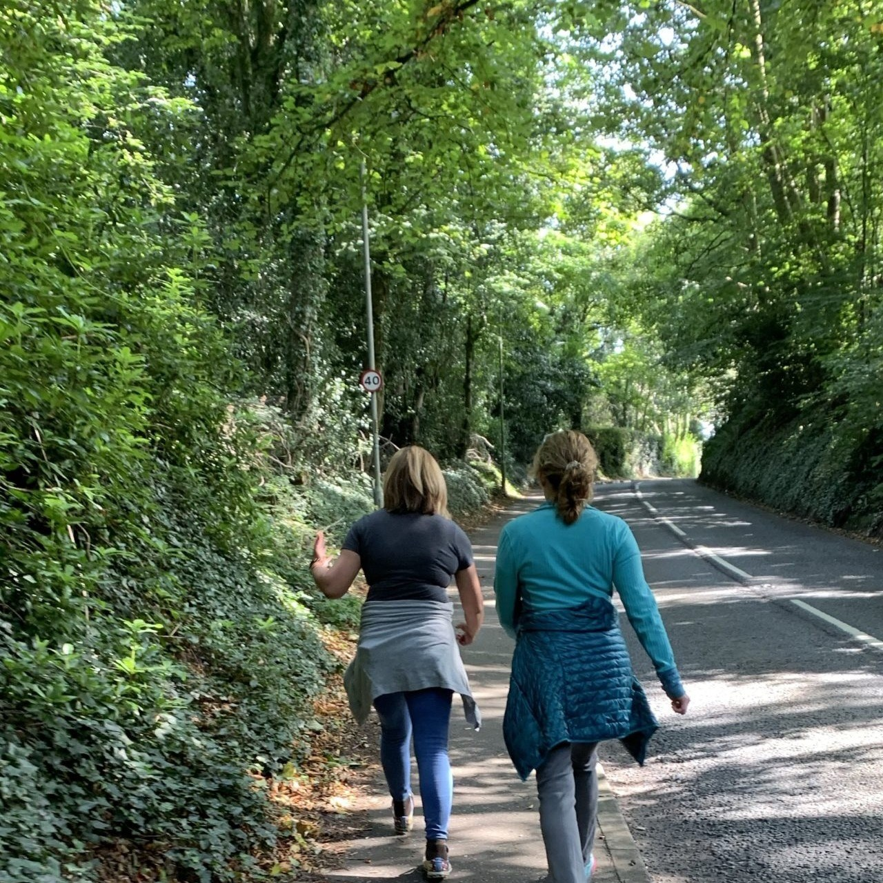Ladies walking along a tree-lined path