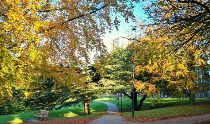 Birmingham University The Vale