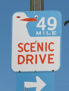 San Francisco 49 Mile Scenic Drive Seagull Sign