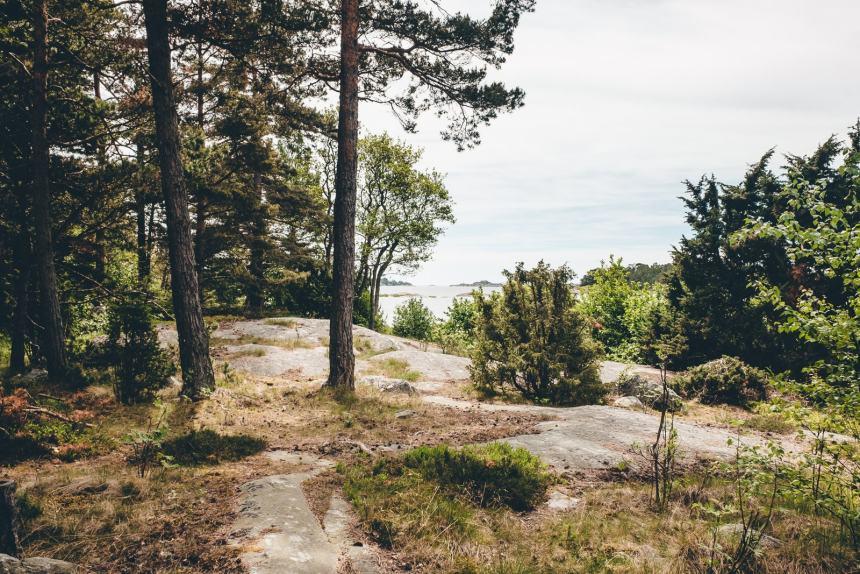 Stockholm Archipelago Fjardlang View