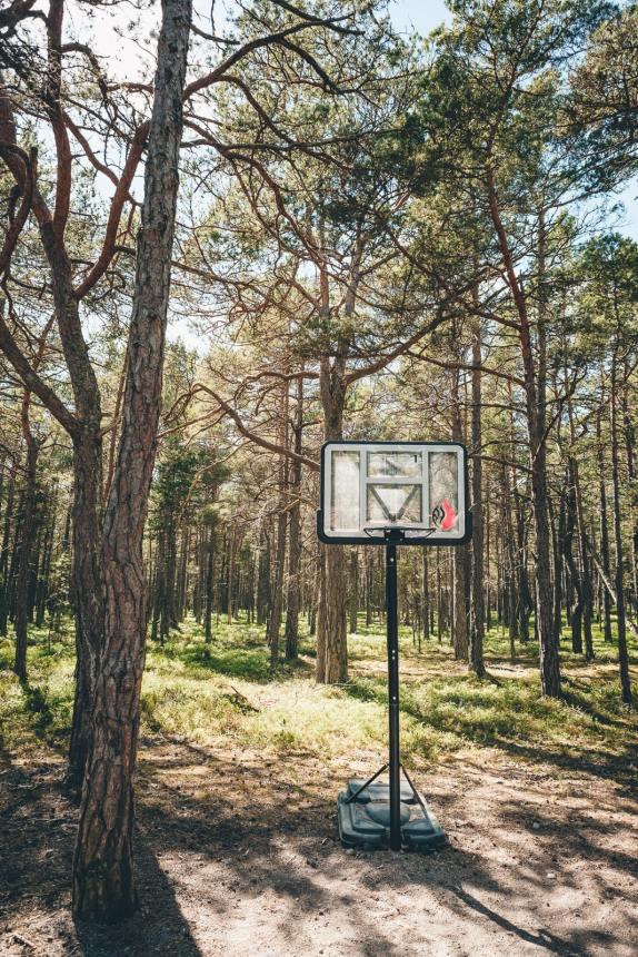 Stockholm Archipelago Sandhamn Forest Basketball