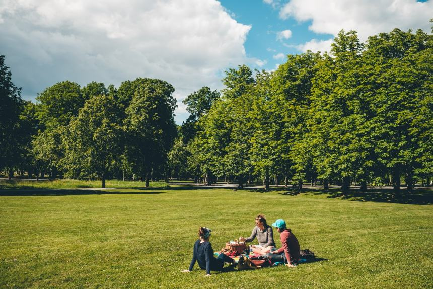 Stockholm Drottningholm Lawn Picnic