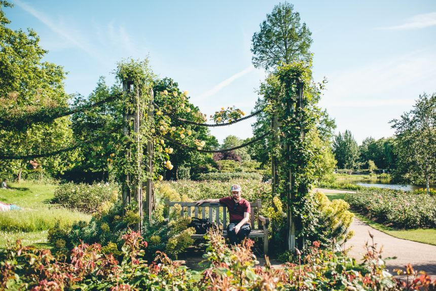 London Itinerary Queen Marys Rose Garden