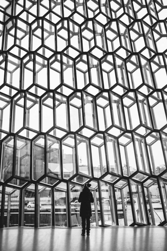 Iceland Reykjavik Harpa Inside Windows Geometric Anna