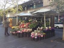 Fresh flower stall
