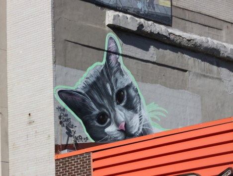 """Kor piece on a Masson rooftop, part of a project called """"Mon chat dans ta ville"""""""