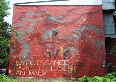 Faith 47's contribution to the 2015 edition of Mural Festival