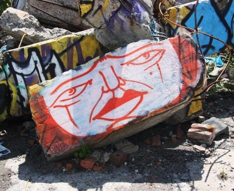 Mono Sourcil in abandoned lot in HoMa