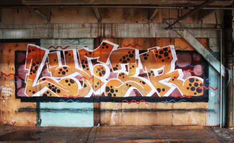 Lyfer piece the abandoned Transco