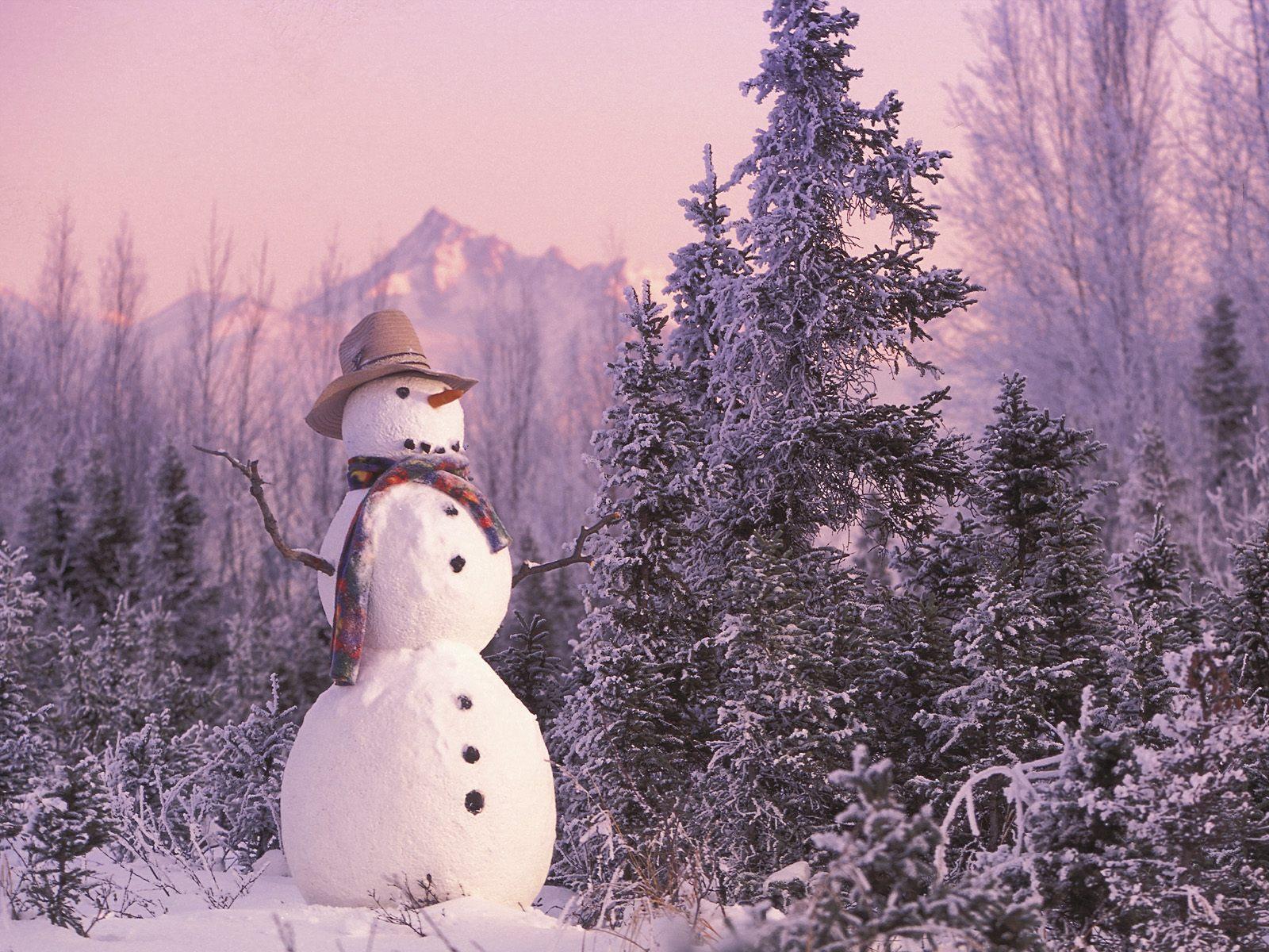 Cute Pink Snowman Wallpaper Snowman Wallpaper High Resolution 8743 Wallpaper