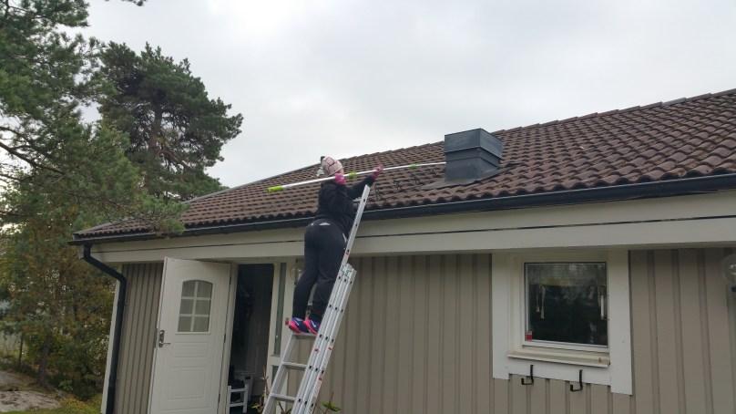 Ta bort mossa från tak