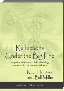Cover-Reflections UTBP