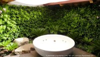 Wall Garden Designs | This WordPress.com site is the cats ...