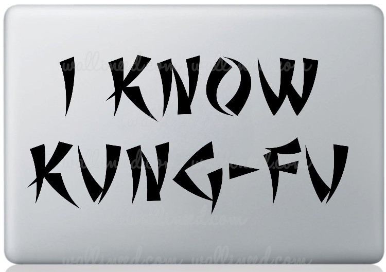 kung fu laptop sticker