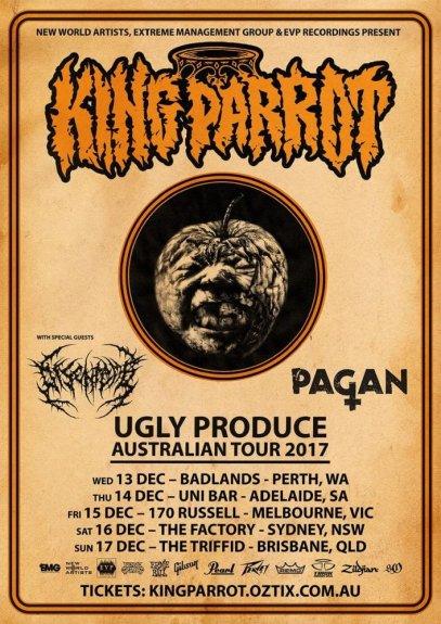 king parrot tour.jpg
