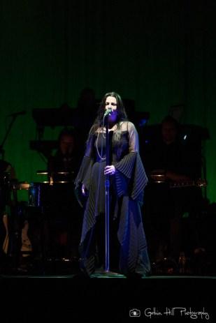 Evanescence (14)