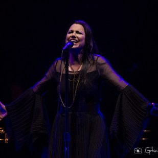 Evanescence (8)