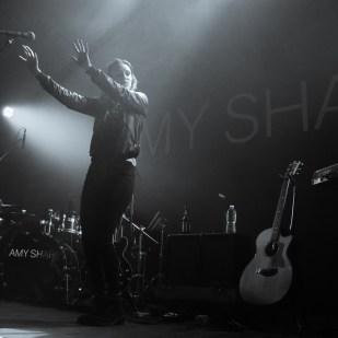 AMY SHARK - 4