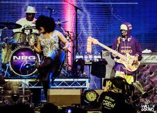 NPG @ Bluesfest 18 WOS 18