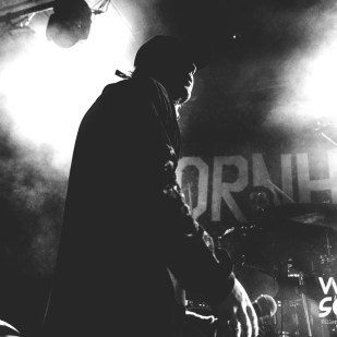 Thornhill_NorthcoteSocial_DylanMartin_2704-4
