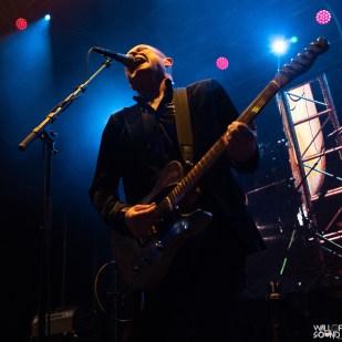 Hoodoo Gurus Wall of Sound-3