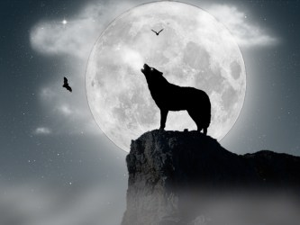 Wolf Moon Wallpapers Group 67+