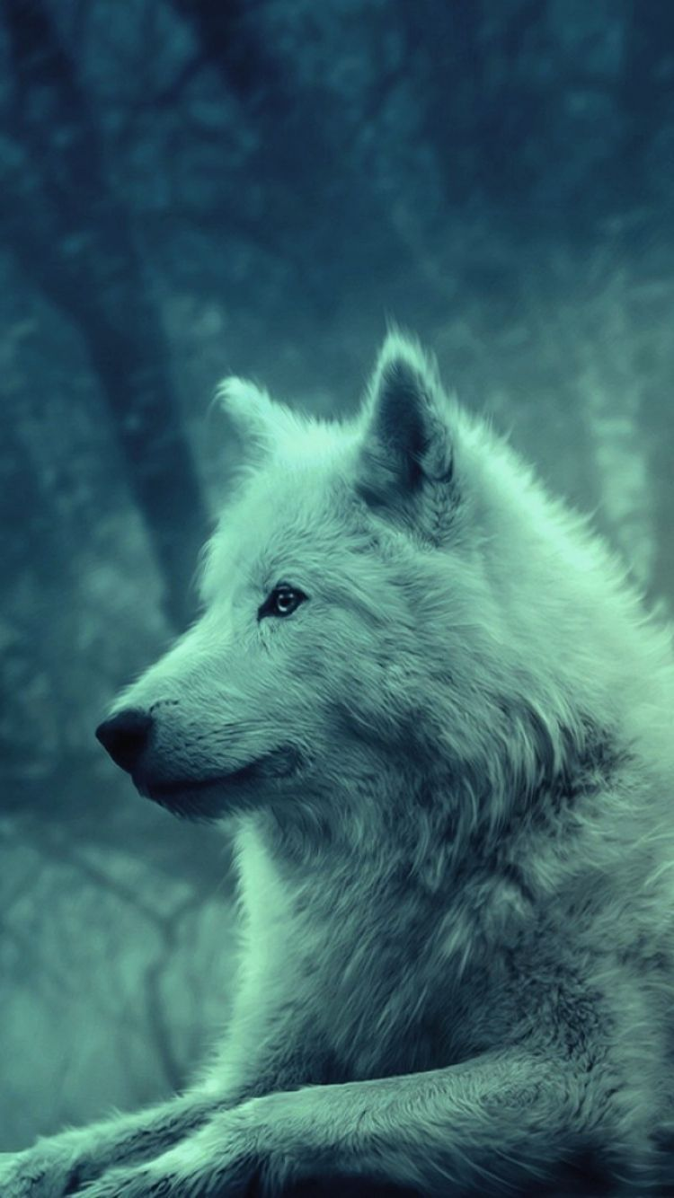 Wolves Wallpapers For Iphone Wallpapersimages Org