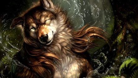 Anime Wolf Wallpapers on WallpaperDog