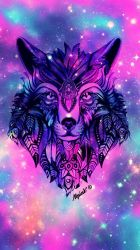 Galaxy Wolves Wallpapers on WallpaperDog