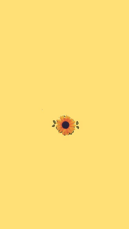 Pastel Yellow Wallpaper Iphone : pastel, yellow, wallpaper, iphone, Pastel, Yellow, Wallpapers, WallpaperDog