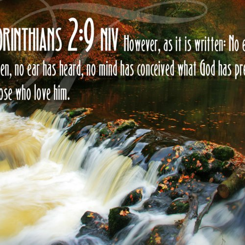 1 Corinthians 2:9 christian wallpaper free download. Use on PC, Mac, Android, iPhone or any device you like.