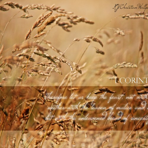 1 Corinthians 5:8 christian wallpaper free download. Use on PC, Mac, Android, iPhone or any device you like.