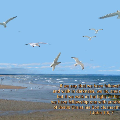 1 John 1:6-7 christian wallpaper free download. Use on PC, Mac, Android, iPhone or any device you like.