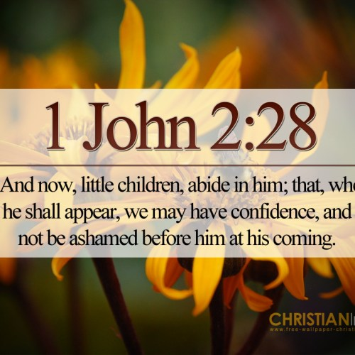 1 John 2:28 christian wallpaper free download. Use on PC, Mac, Android, iPhone or any device you like.