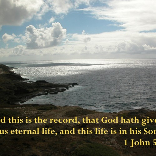 1 John 5:11 christian wallpaper free download. Use on PC, Mac, Android, iPhone or any device you like.