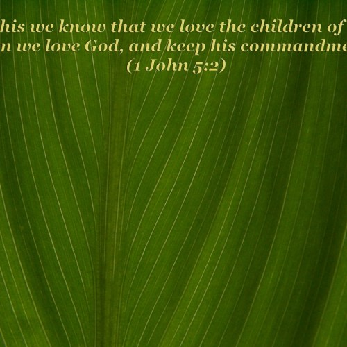 1 John 5:2 christian wallpaper free download. Use on PC, Mac, Android, iPhone or any device you like.
