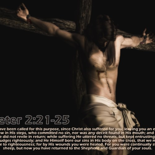 1 Peter 2:21-25 christian wallpaper free download. Use on PC, Mac, Android, iPhone or any device you like.