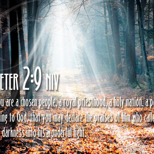 1 Peter 2:9 christian wallpaper free download. Use on PC, Mac, Android, iPhone or any device you like.