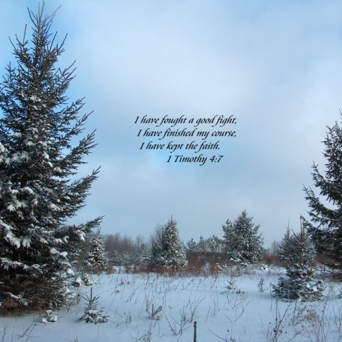 1 Timothy 4:7 christian wallpaper free download. Use on PC, Mac, Android, iPhone or any device you like.